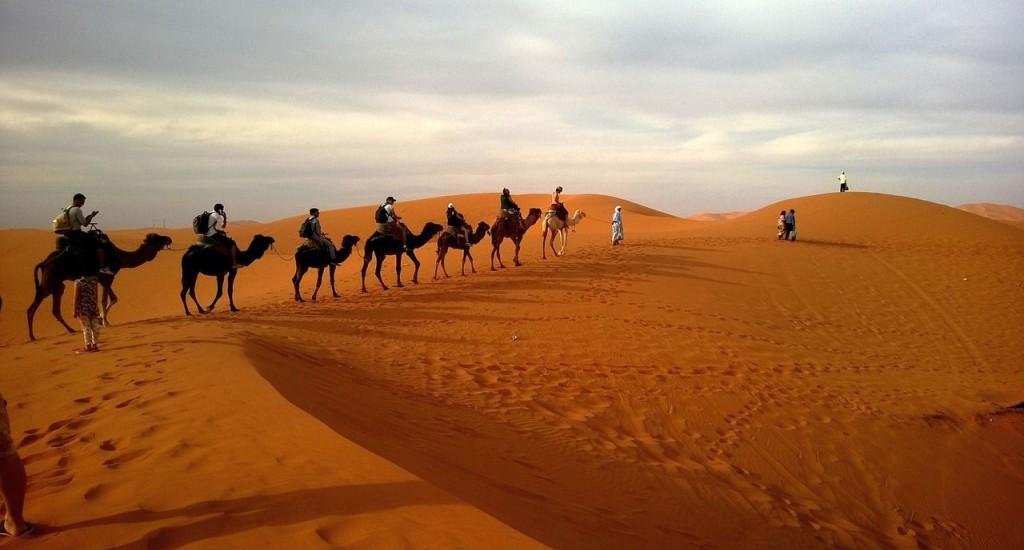 Wüstentouren